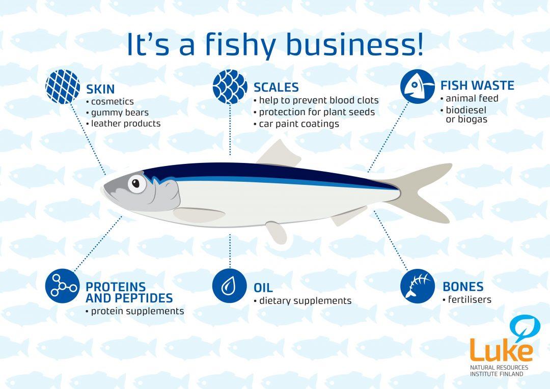 Kala voidaan hyödyntää eri käyttötarkoituksiin kokonaisuudessaan: iho, suomut, ruodot, proteiinit, kalaöljy ja kalanperrkeet