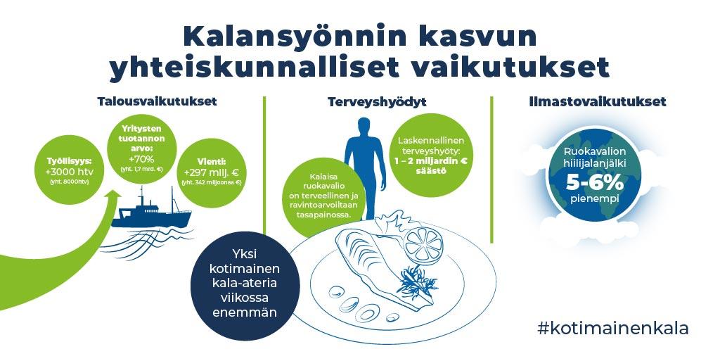 Kotimaisen kalan edistämisohjelma lausunnoille – tavoitteena kaksinkertaistaa kotimaisen kalan käyttö