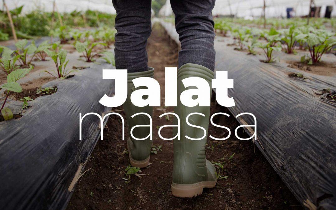 Jalat maassa -podcastin uusin jakso kertoo kalankasvatuksesta