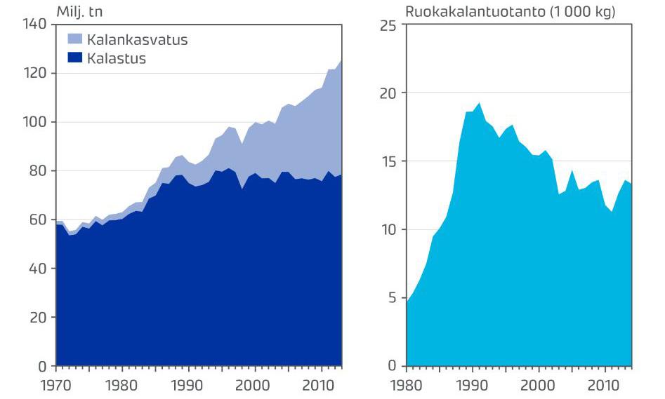 Tabell: Fiskodlingen har ökat sedan 90-talet, trots att produktionen av matfisk totalt sett har minskat.